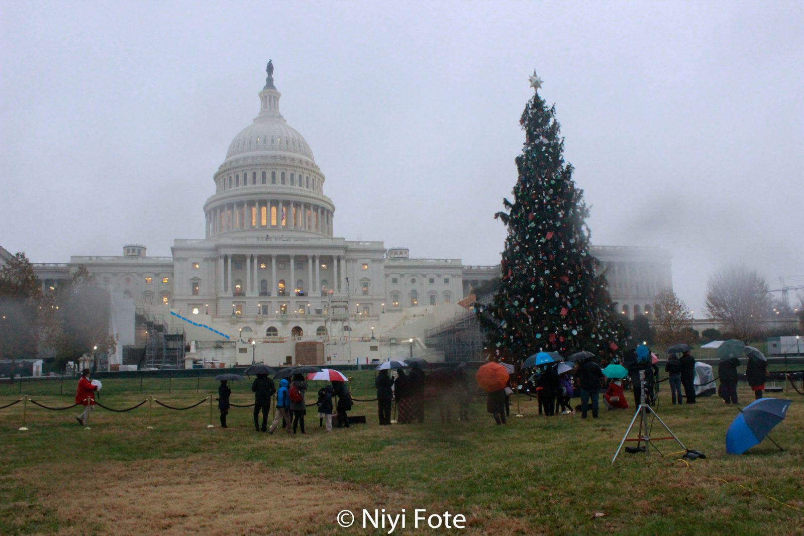 Capitol Hill`s Christmas Tree inaugurated & lit by Paul Ryan & Isabella Gerald