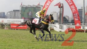 Sao Paulo Horse Race Black Opal 2018