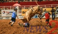 First Weekend of 32nd Rodeo in Americana-Sao Paulo