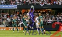 Palmeiras Leads in Brazilian League
