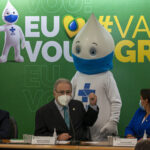 The Beginning of Flu Vaccination in Brazil.